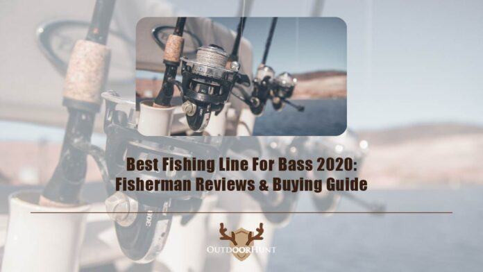best-fishing-line-for-bass